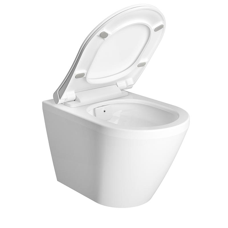 Aquacare Wand-WC-Set Integra mit Bidetfunktion, Weiß Hochglanz