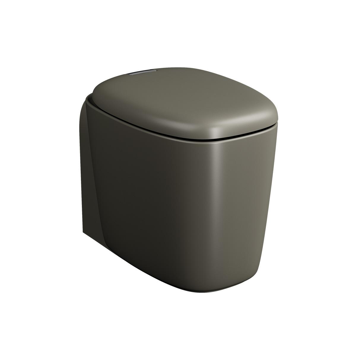 Plural WC BTW sans bride, fonction bidet, 55 cm, VC, vison mat