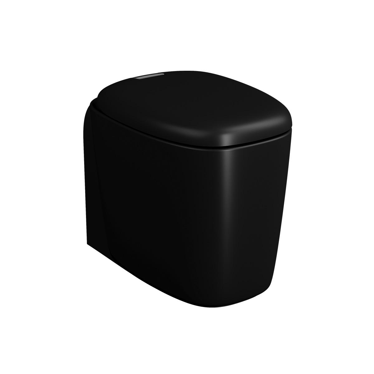 Plural WC BTW sans bride, fonction bidet, 55 cm, VC, noir mat